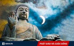"""""""Chất vấn"""" Đức Phật hồi lâu, người đàn ông nhận ra nguồn gốc của mọi khổ đau trên đời"""