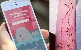"""Trò chơi nguy hiểm """"Cá voi xanh"""" đã vào Việt Nam?"""