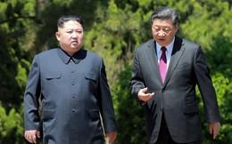 """Hội nghị bí mật Trung-Triều: Ông Kim căng thẳng, ông Tập mỉm cười """"trìu mến"""""""