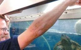 Cho rùa ăn tái cún con trước lớp, thầy giáo đối mặt án tù