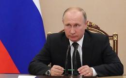 Ông Putin cho thôi nhiệm một loạt cố vấn trong đợt cải tổ mới
