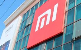"""""""Mua cổ phiếu Xiaomi khi IPO không khác gì đánh bạc"""""""