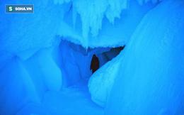 Thám hiểm hang băng ở độ cao gần 4000m: Phát hiện sinh vật lạ, khoa học chưa từng biết