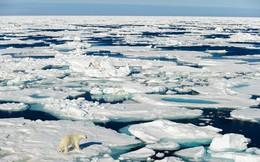 Giới khoa học cảnh báo các di chỉ khảo cổ ở Bắc Cực đang chìm dần