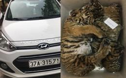 Kiểm tra xe con 4 chỗ phát hiện 5 cá thể hổ giấu bên trong