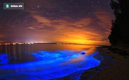 Những bãi biển đến kỳ lạ, không thể ngờ có thật trên Trái Đất