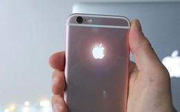 Tại sao Apple không làm logo táo trên iPhone phát sáng?