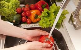 Xử trí và phòng tránh ngộ độc thực phẩm trong mùa nóng