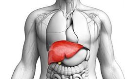 """Tăng men gan: Cẩn trọng những căn bệnh này đang """"đục khoét"""" sức khỏe"""
