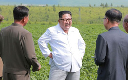 Lý do ông Kim Jong-un bận không tiếp Ngoại trưởng Mỹ thăm Triều Tiên lần 3