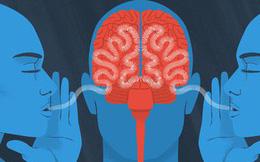 ASMR: Khi loại âm thanh ồn ào đến bực mình này lại khiến người ta... dễ ngủ