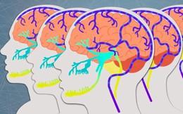 """""""Đông não"""" - hiện tượng tưởng lạ nhưng khối người đã từng trải qua cảm giác này"""