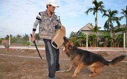 Chuyên gia huấn luyện bật mí bí mật không ngờ tại sao chó cắn chủ