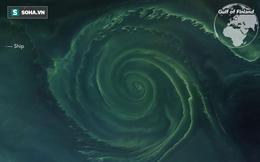 Vòng xoáy khổng lồ ở Baltic: Rộng 24 km, được mệnh danh là vùng tử thần trên biển