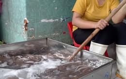 """Ăn hải sản """"tắm"""" hóa chất rước họa vào thân: Chuyên gia chỉ cách phân biệt hải sản tươi và hải sản """"tắm"""" hóa chất"""