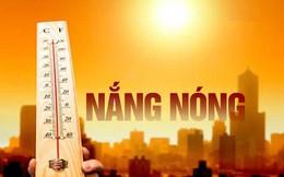 Không chỉ riêng chúng ta bị cái nắng thiêu đốt, nhiều nơi trên thế giới cũng nóng kỷ lục!