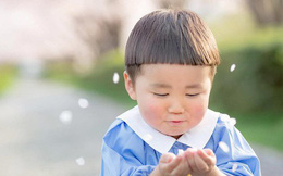 Cậu nhóc Nhật Bản đầu nấm má phính với 1001 biểu cảm không yêu không được