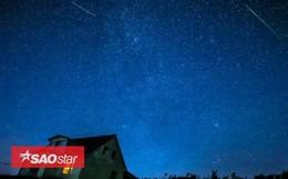 Mưa sao băng Perseid đẹp tuyệt vời trên bầu trời đêm