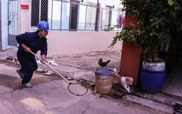 Quận trung tâm Sài Gòn ra quân bắt chó thả rông