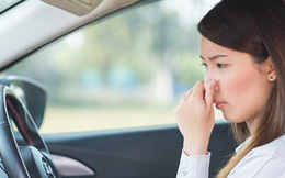 Giải pháp đơn giản khử mùi trong xe hơi
