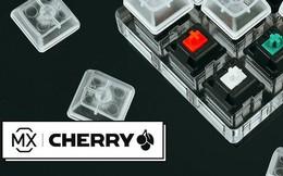 Cha đẻ của phím cơ Cherry và đế chế xây nên từ một nút bấm nhỏ bé