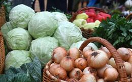 Phát hiện trong cải bắp, su hào và súp lơ chất ngăn ngừa ung thư ruột