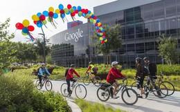 Google, Apple và 13 công ty lớn khác không còn yêu cầu nhân viên phải có bằng đại học
