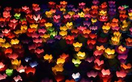 [Chùm ảnh] Hàng nghìn người dân thả đèn hoa đăng trong ngày lễ Vu lan tại TPHCM