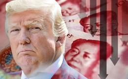 """Tranh thủ Mỹ lơ là vì Nga, Trung Quốc liền âm thầm """"mua"""" ảnh hưởng trong nội bộ Mỹ"""