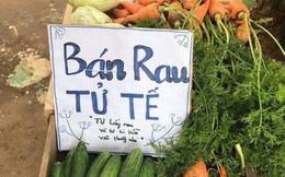 Việc tử tế dễ thương nhất hôm nay: Bán rau sạch tự nhiên, người mua rau tự bỏ tiền vào thùng!