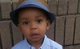 Cậu bé 2 tuổi bị chính 3 con chó Pitbull nhà nuôi cắn chết