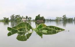 Xem xét ý tưởng xây trạm bơm cho vùng lũ Chương Mỹ, Hà Nội