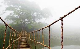 Cầu mây Tả Van (Sa Pa) nổi tiếng thế giới qua một bức ảnh