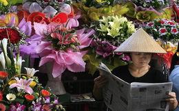 """Học giả nước ngoài tại WEF: """"Sẽ có ngày người dân Việt Nam đều đi ô tô thay vì xe máy"""""""