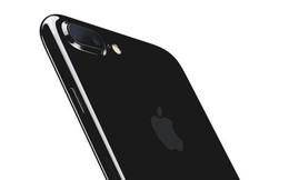 Apple giảm giá 100 USD cho iPhone 7, 7 Plus và iPhone 8, 8 Plus