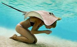 Bí mật liên quan tới bức ảnh cá đuối trùm lên người cô gái