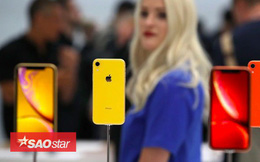 iPhone Xr có phiên bản màu san hô, thế nhưng màu san hô là màu gì?