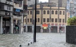 Hơn 200 người tại Hồng Kông bị thương do bão Mangkhut