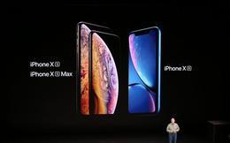 eSIM của Apple chưa được hỗ trợ bởi bất cứ nhà mạng nào ở Việt Nam