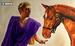 """Sự thật về các vị hoàng đế, trong đó tiết lộ về bạo chúa Caligula """"sủng ái"""" ngựa"""