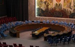 Việt Nam sẵn sàng đón nhận chiếc ghế tại Hội đồng Bảo an Liên Hợp Quốc
