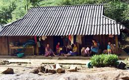 """Vui Tết Độc lập ở Lóng Luông sau """"cơn bão lửa"""""""
