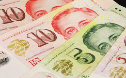 Phía sau việc Chính phủ Singapore chia tiền cho người dân