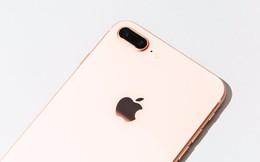 Tôi thử dùng chiếc iPhone to nhất của Apple - và nó khiến tôi yêu chiếc iPhone 6s của mình hơn