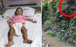 Bé gái 20 tháng tuổi sống sót kỳ diệu sau gần 1 tuần đi lạc trong rừng, không có thức ăn hay nước uống