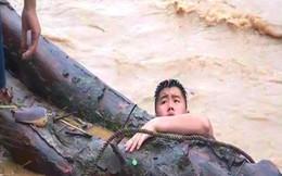 Người dân Nghệ An vớt được cây gỗ samu dầu có giá hàng trăm triệu đồng gây xôn xao