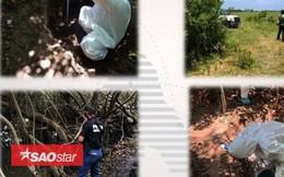 Phát hiện 166 hộp sọ người trong mộ tập thể ở Mexico