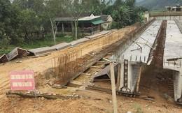 Đình chỉ dự án có 'đầu gấu' uy hiếp người dân ở Hà Tĩnh