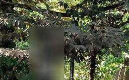 Chồng chém chết vợ rồi ra sau nhà treo cổ tự tử