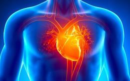 Những hành vi gây tổn thương tim khiến nhiều người đột tử: Ai cũng nên biết trước để tránh